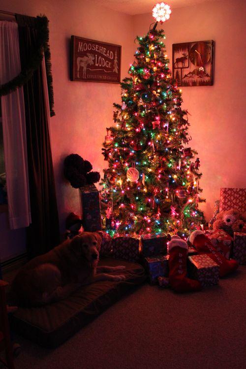 Christmas 2011 145